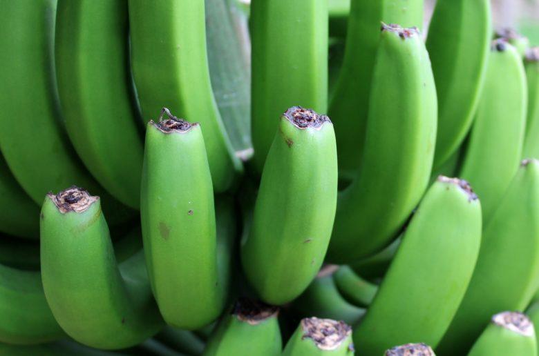banana 1628206 1920