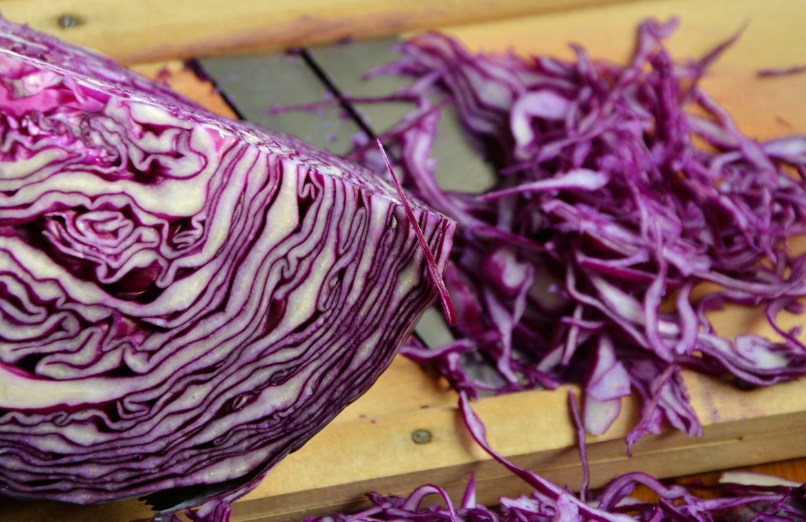 red cabbage 1931731 1920