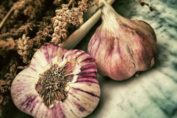 garlic 139659 1920
