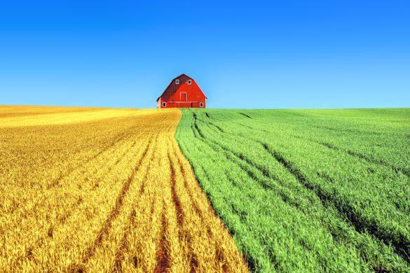 farm 2796509 1920