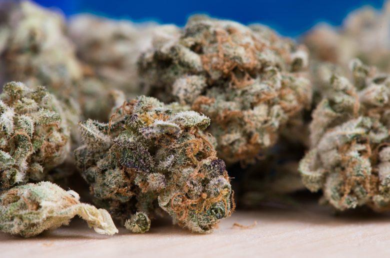 cannabis 2150543 1920
