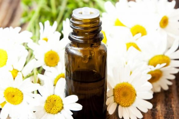chamomile-roman-essential-oil-1545019168-4568707