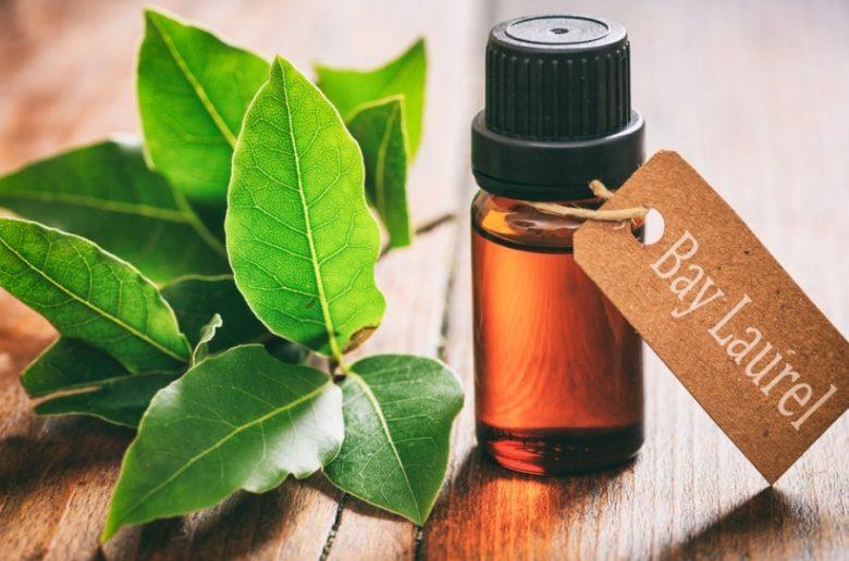laurel-oil-benefits