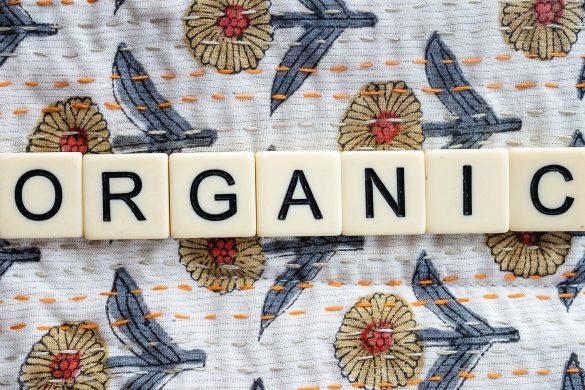 organic-5570297_1920